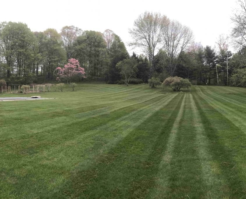 Here is an example of a beautifully landscaped lawn. We have done all the lawn care and lawn maintenance for this lawn in Brookfield CT.