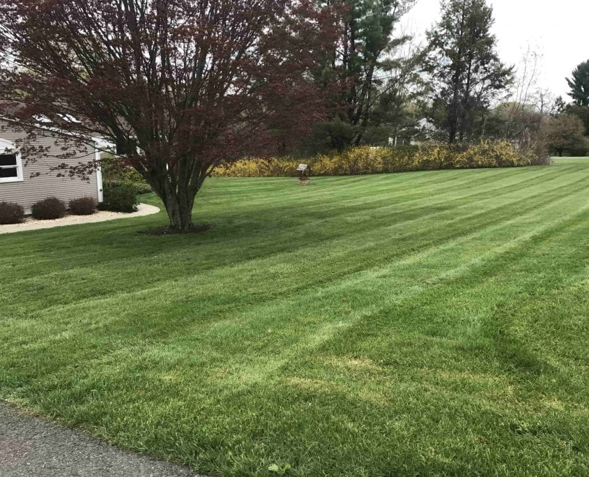 lawn mowing and lawn maintenance service in Brookfield CT