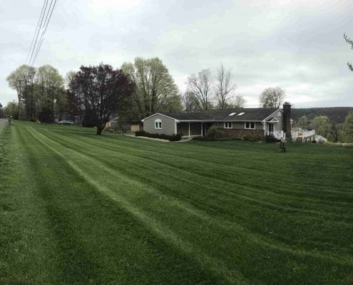 Lawn Care and lawn mowing services in Brookfield CT